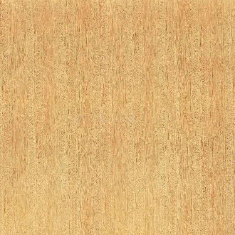 116 台湾红竹